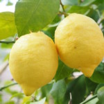 Interesting Health Benefits оf Lemons